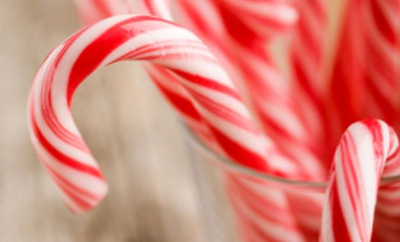 Bastoncini di zucchero natalizi, la ricetta per un Natale dolcissimo | I dolcetti di Paola