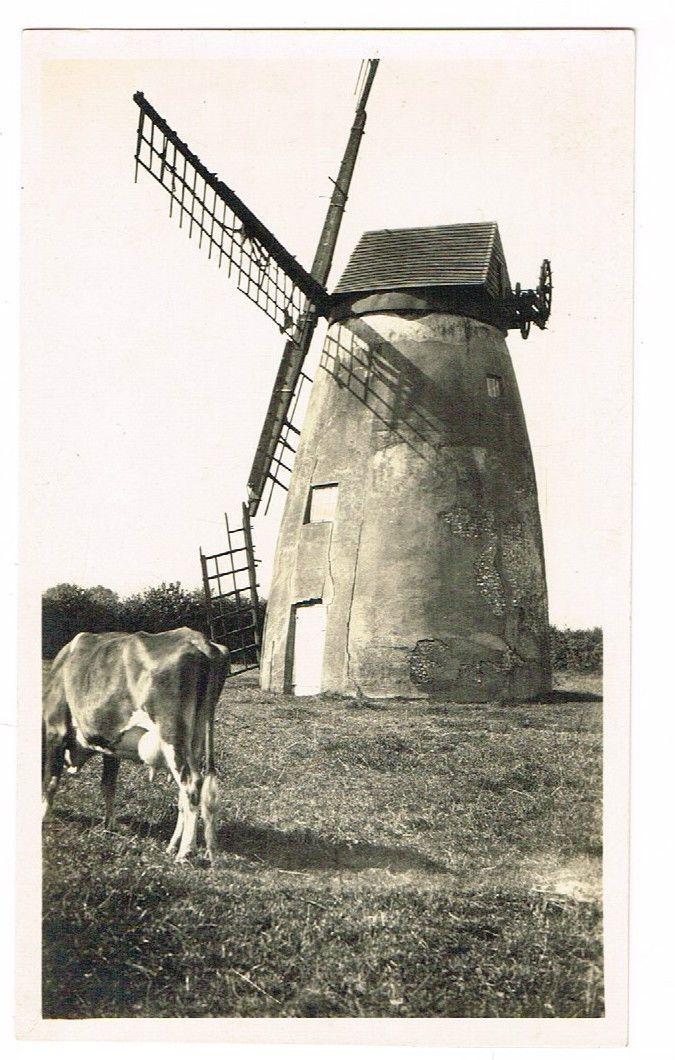 OLD PHOTOGRAPH HOLMER GREEN WINDMILL HIGH WYCOMBE BUCKS REX WAILES C.1925 | eBay