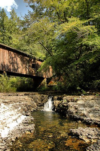 Cohelee Creek Bridge Early County GA Southernmost Covered Bridge Georgia Pictures Photo Copyright Brian Brown Vanishing South Georgia USA 2011