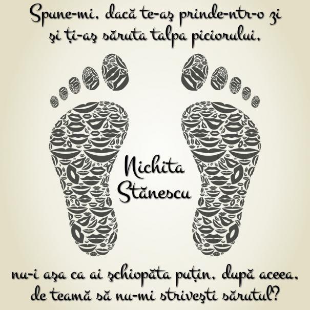 #citat #poezie #nichita #sarut #talpa