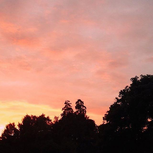 About last night 💛 #sunset #sunsetlovers #sun #love