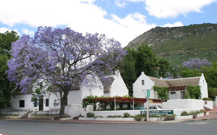 Paarl -- South Africa