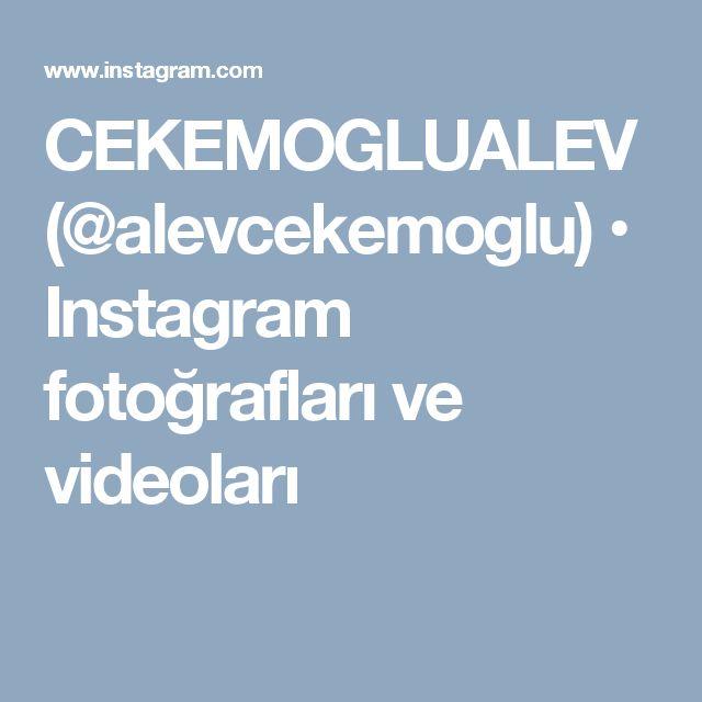 CEKEMOGLUALEV (@alevcekemoglu) • Instagram fotoğrafları ve videoları