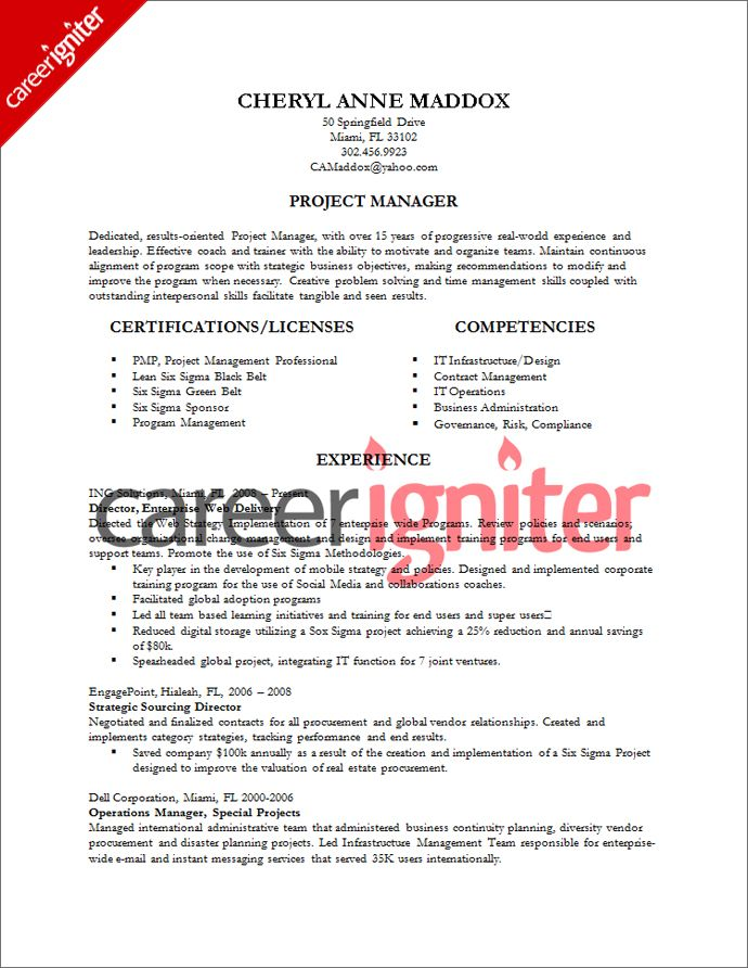 Resume Examples For Project Managers  Template
