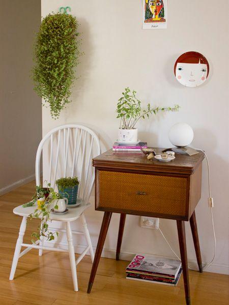 •Decoración de interiores •Plantas