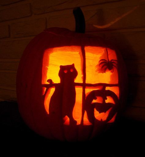 17 best ideas about cat pumpkin on pinterest cat pumpkin for Cat carved into pumpkin