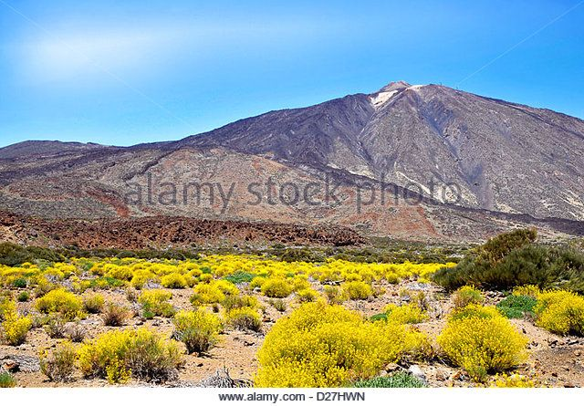 Mount Teide or, in Spanish, Pico del Teide (3718m), is a volcano at Tenerife in the Spanish Canary Islands. - Stock Image