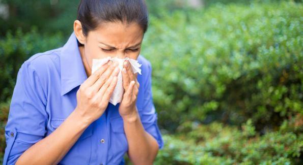 Des remèdes naturels pour lutter contre les allergies printanières