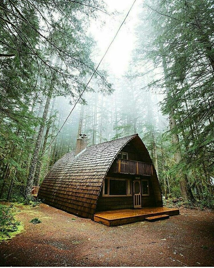 House In The Forrest