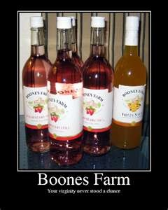 boones farm watermelon wine