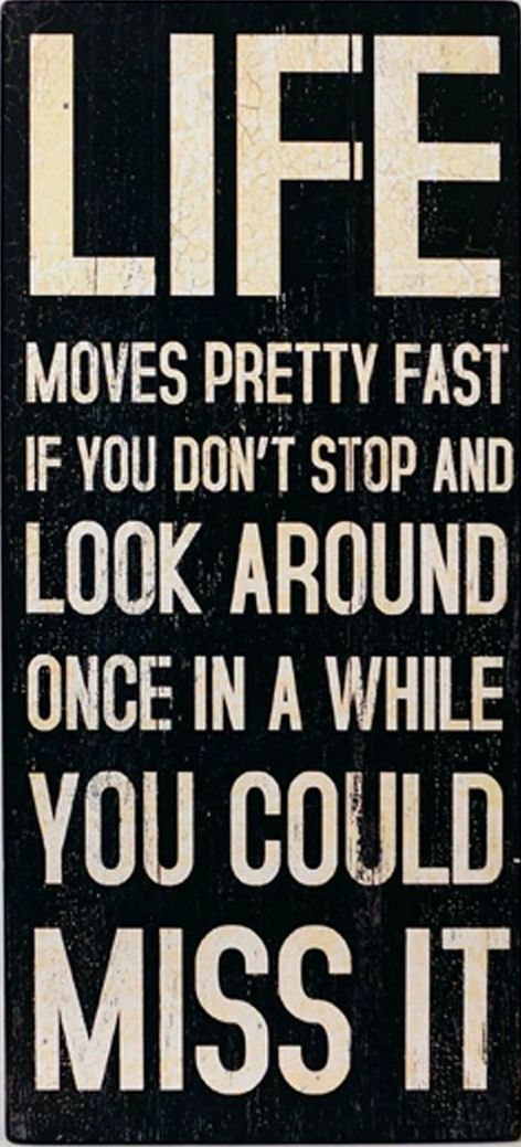 Life Moves Around Pretty Fast .. If You DOn't Stop & Look Around Once in A While You Could Miss It