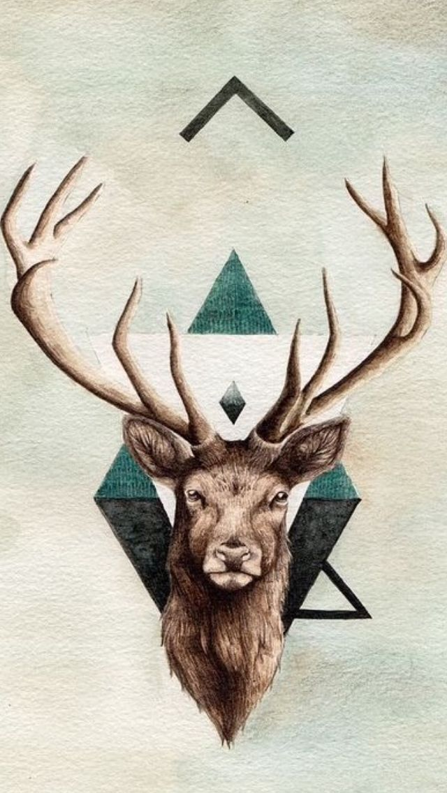 The 25+ best ideas about Deer Wallpaper on Pinterest ...
