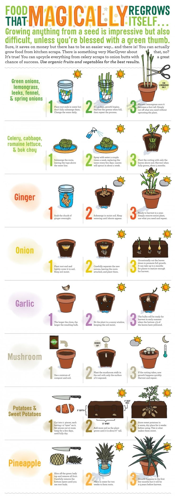 Kitchen Gardeners 17 Best Ideas About Biodynamic Gardening On Pinterest