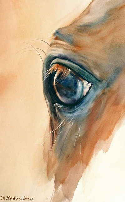 Horse painting eye study nice art by others artist for Make a picture look like a painting