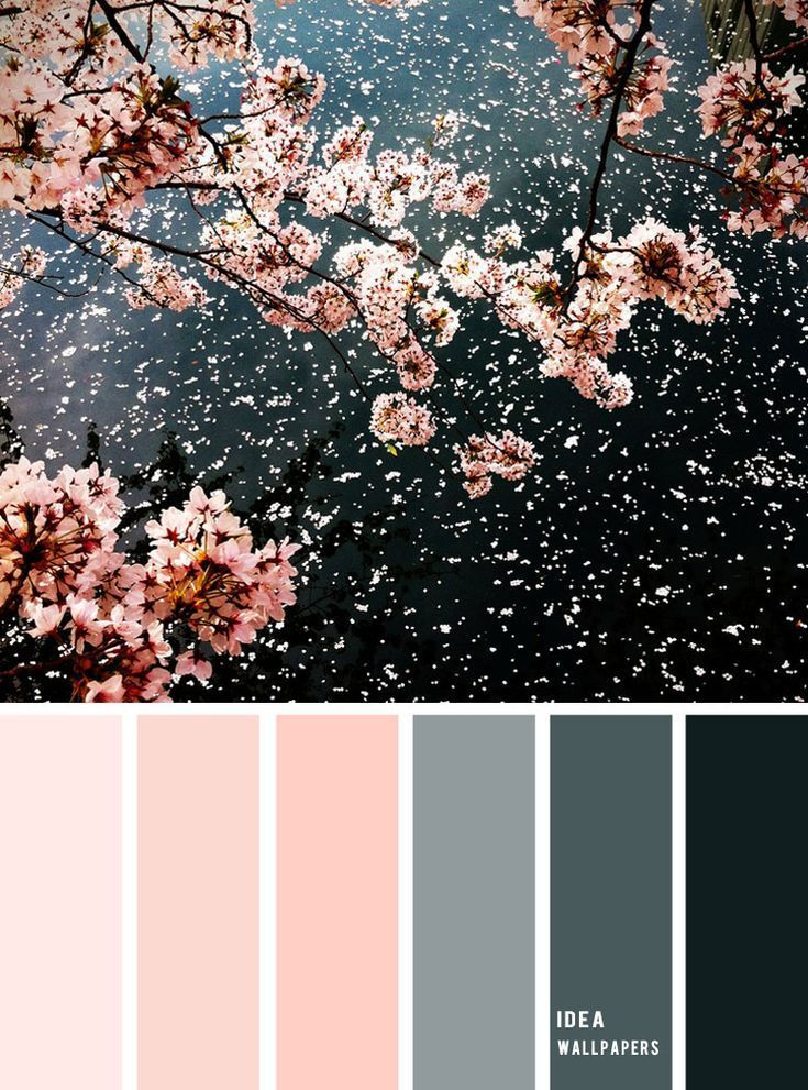 Excellent Screen Color Palette Pastel Ideas If You Are A Newcomer Or Perhaps A Classic Hand Using In 2021 Color Palette Pink Grey Color Palette Pink Color Combination