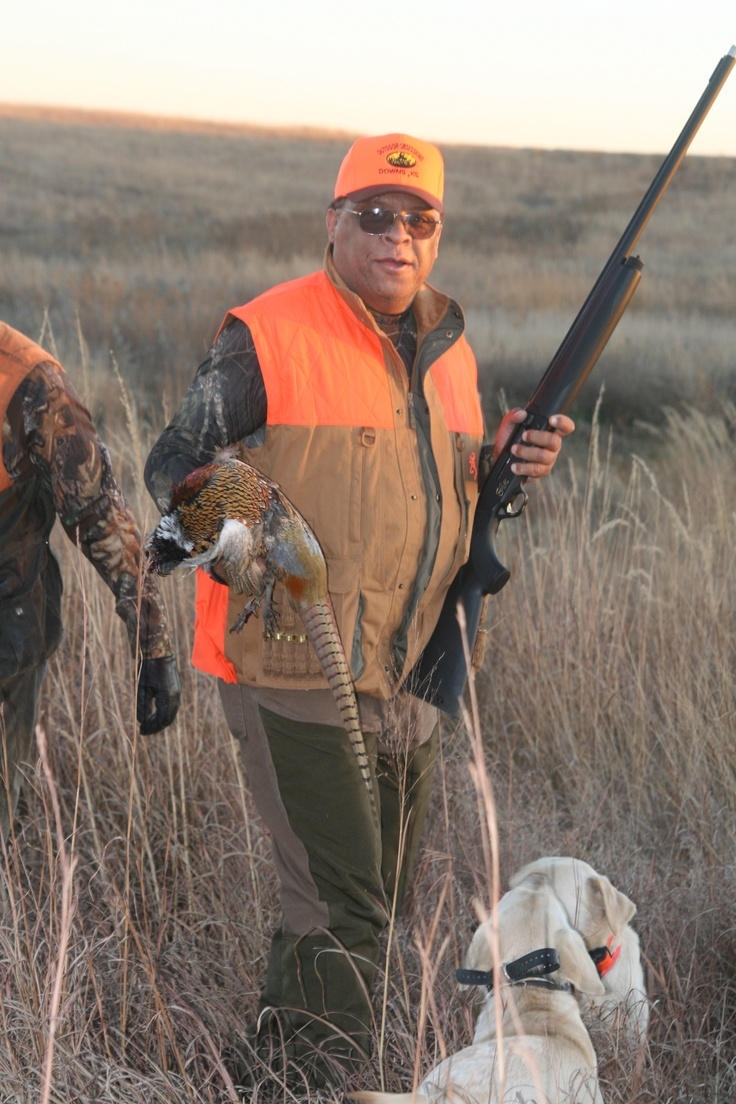 19 best Pheasant Hunting images on Pinterest | Pheasant ...