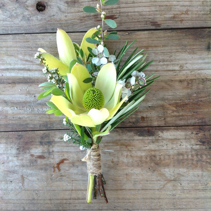 Pretty Discolour Leucadendron Buttonhole Native Weddings at Peninsula Wild Flower