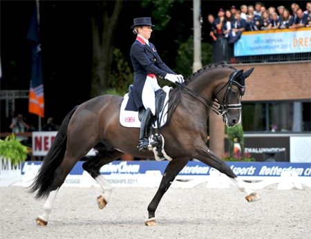 Valegro - amazing horse!