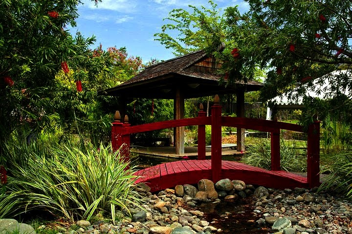 10 best images about my beautiful island on pinterest for Jardin japones ponce