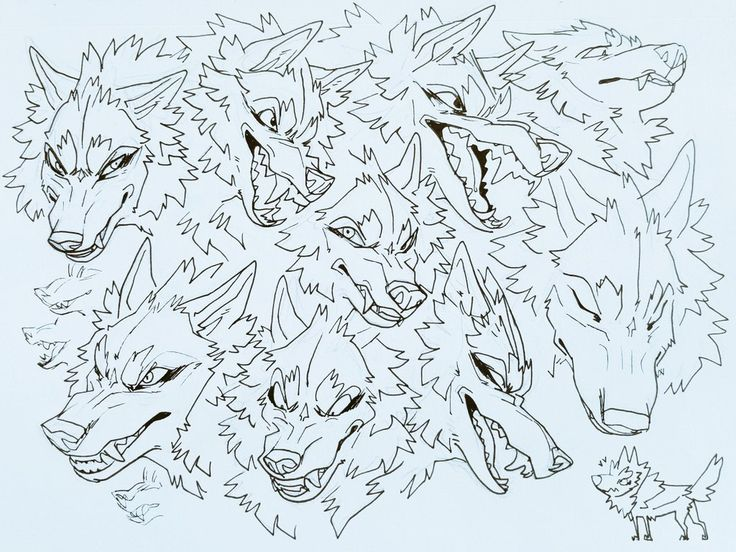 """Reylai (( B L M )) on Twitter """"Daily bites! For the last"""