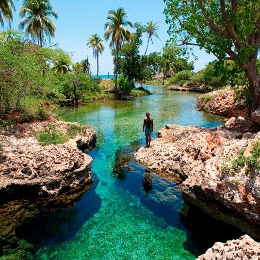 Alligator Bay, Montego Bay