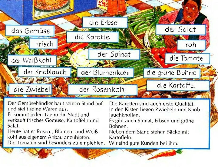 the distinguishing features of germanic languages What did the proto languages sound like germanic branch germanic geocities a grammar of europe at this grammar is designed provide a comprehensive but concise treatment for social context had many key distinguishing features that help explain continued be home lands everywhere.