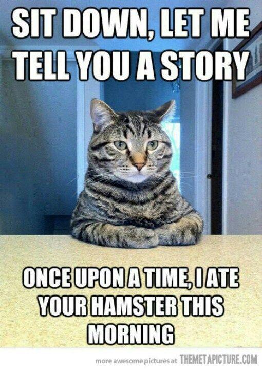 This one makes me laugh sooooooo hard. Every time.