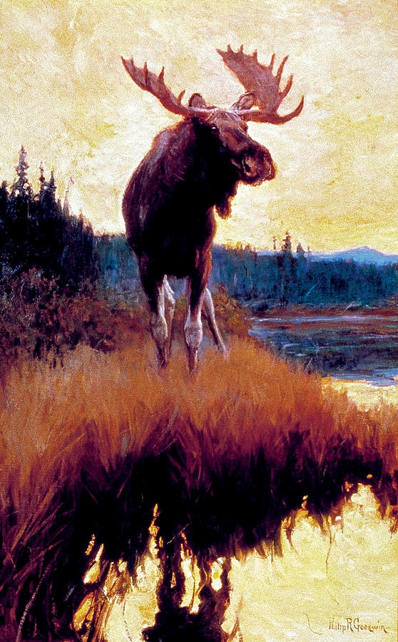 Moose Against Skyline Painting by Phillip R Goodwin - Moose Against Skyline Fine Art Prints and Posters for Sale