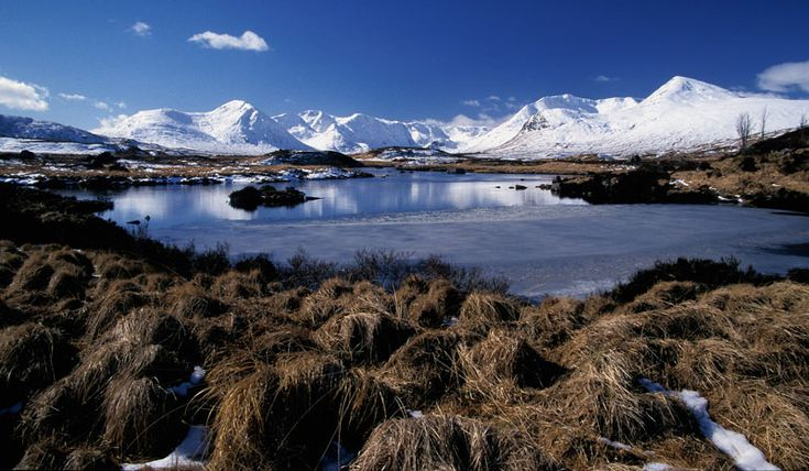 scotland moor - Google Search