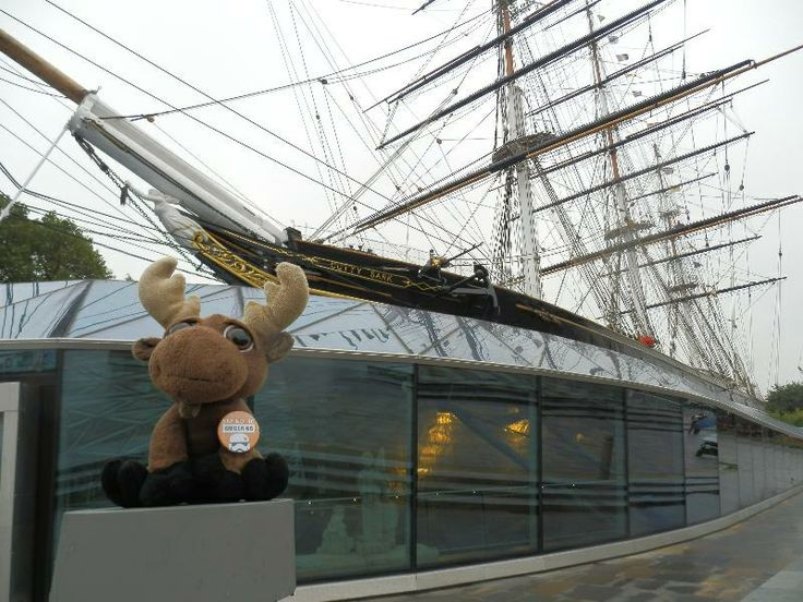 Mr. Moose next to the ship. Is there any tea or coffee left inside?