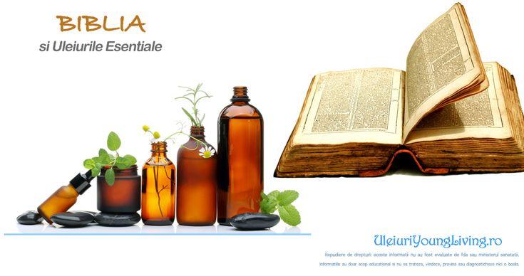 Uleiuiri Esentiale Biblice Vindecatoare / Tamaduitoare