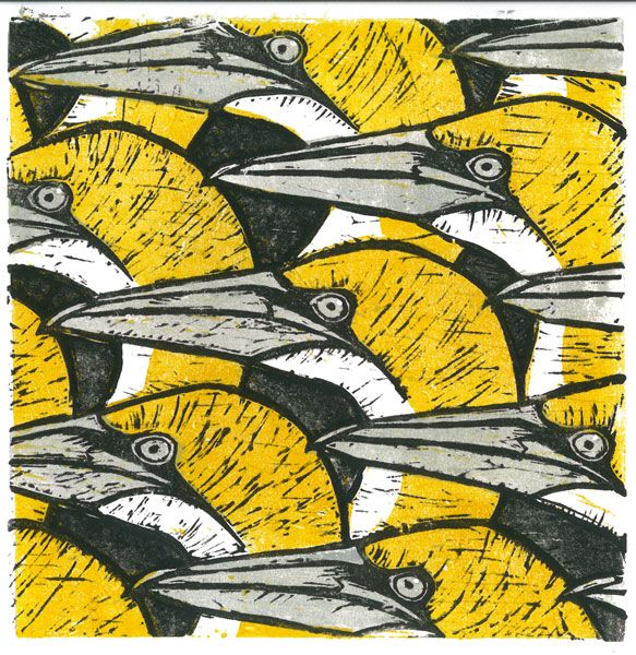 Lino cut 'Gannet Heads' by Howard Towll More