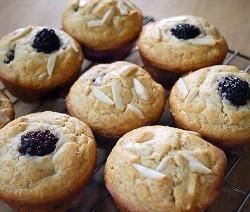 blackberry vanilla almond muffins (gluten free)