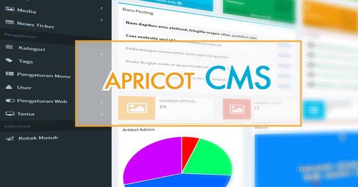 CMS Berbasis CodeIgniter Buatan Indonesia