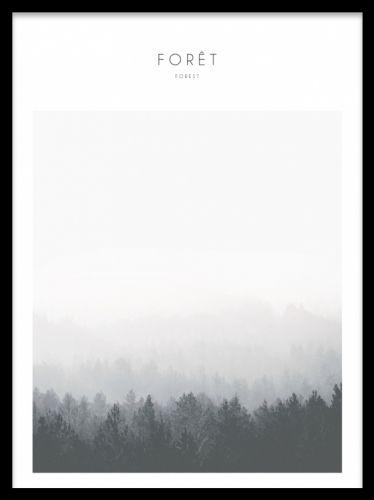 Posters med naturmotiv i svartvitt