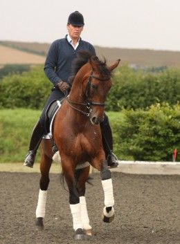 Emile Faurie is the oldest rider on Team GB at the 2012 Olympics