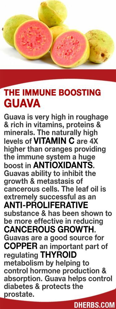 Guava is very high in roughage  rich in vitamins, proteins  minerals. The naturally high levels of Vitamin C (4X higher than oranges) provides the immune system a huge boost in antioxidants. The leaf oil is extremely successful as an anti-proliferative substance  more effective in reducing cancerous growth. Guavas are a good source for copper an important part of regulating thyroid metabolism by helping to control hormone production  absorption. #dherbs