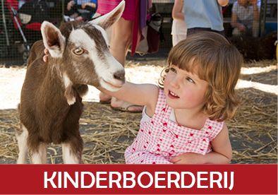 Home - Kinderboerderij Hagerhof