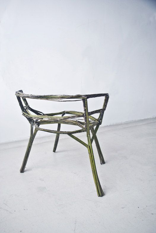 The chair that you grow yourself