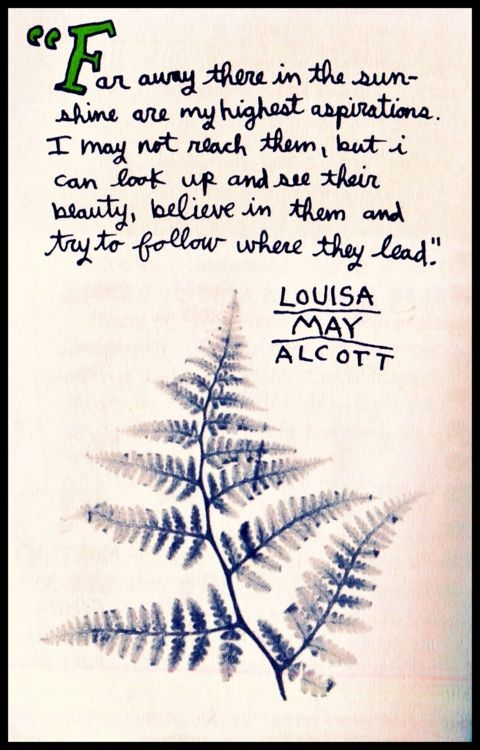 Louisa May Alcott: Far away there in the sunshine are my highest aspirations. I may not reach them, but I can look up and see their beauty, believe in them and try to follow where they lead.