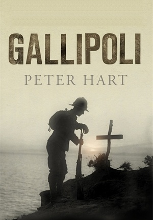 Gallipoli by Peter Hart    On the war against Turkey that sunk Winston Churchill's political career.     Reviewed in http://www.washingtontimes.com/news/2011/nov/18/book-review-gallipoli/