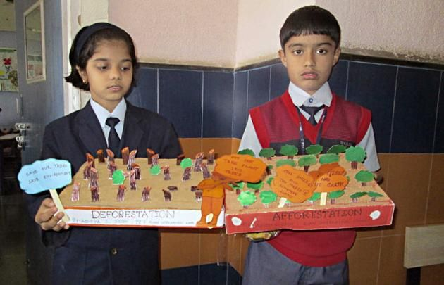 deforestation presentation model | Students of Ryan ...