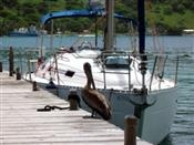 Conch Charters BVI: Beneteau 332 2c/1h ~ 2000, this place charters nicely priced boats in the