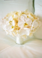 cream cabbage rose and phaleonapsis orchids wedding boquet!!!!!!! add a pop of color BEAUTIFUL