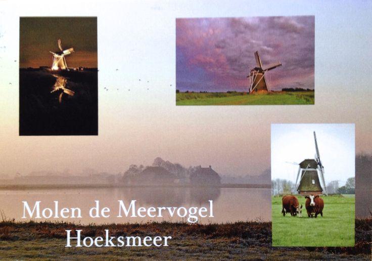 Postal de Tina, desde Países Bajos :)