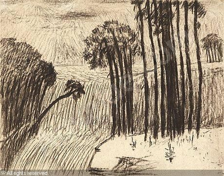 hill-carl-fredrik-1849-1911-sw-landscape-with-trees-and-water-3142351-500-500-3142351.jpg (460×361)