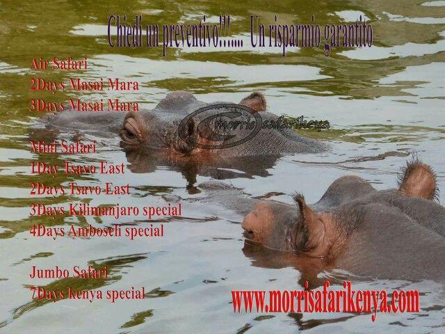 offerte safari in kenya