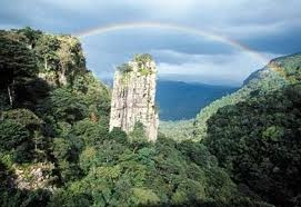 God's Window, South Africa...my favorite place in South Africa!