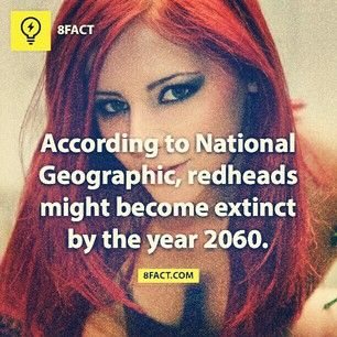 Breed dying redhead
