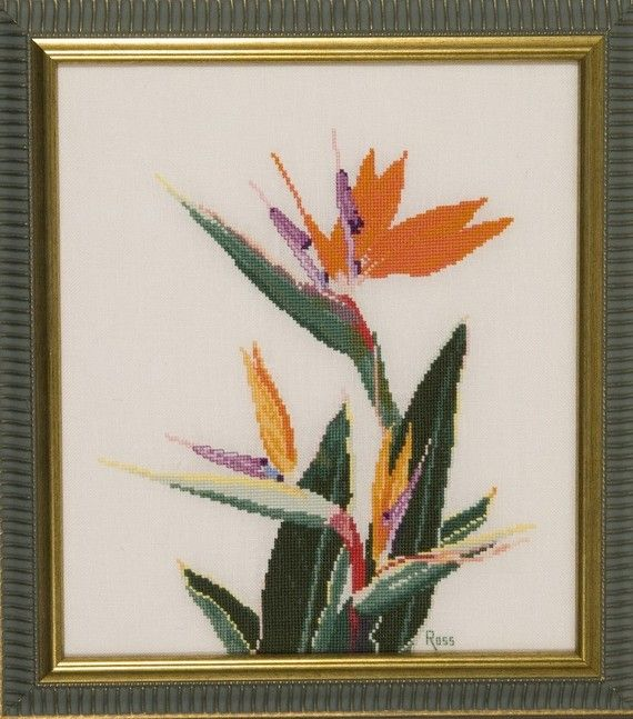 Hey, I found this really awesome Etsy listing at https://www.etsy.com/listing/53778400/bird-of-paradise-or-strelitzia-framed